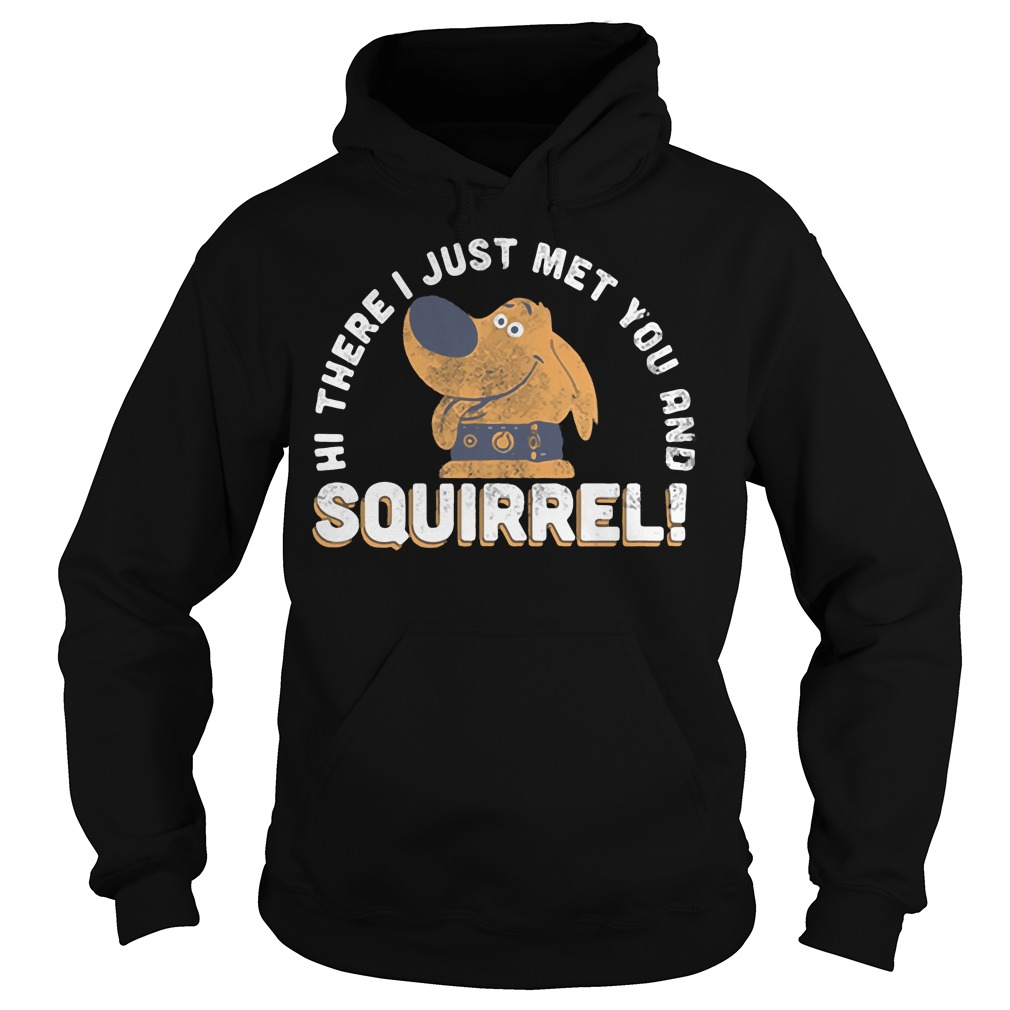 Hi there I just met you and Squirrel Hoodie