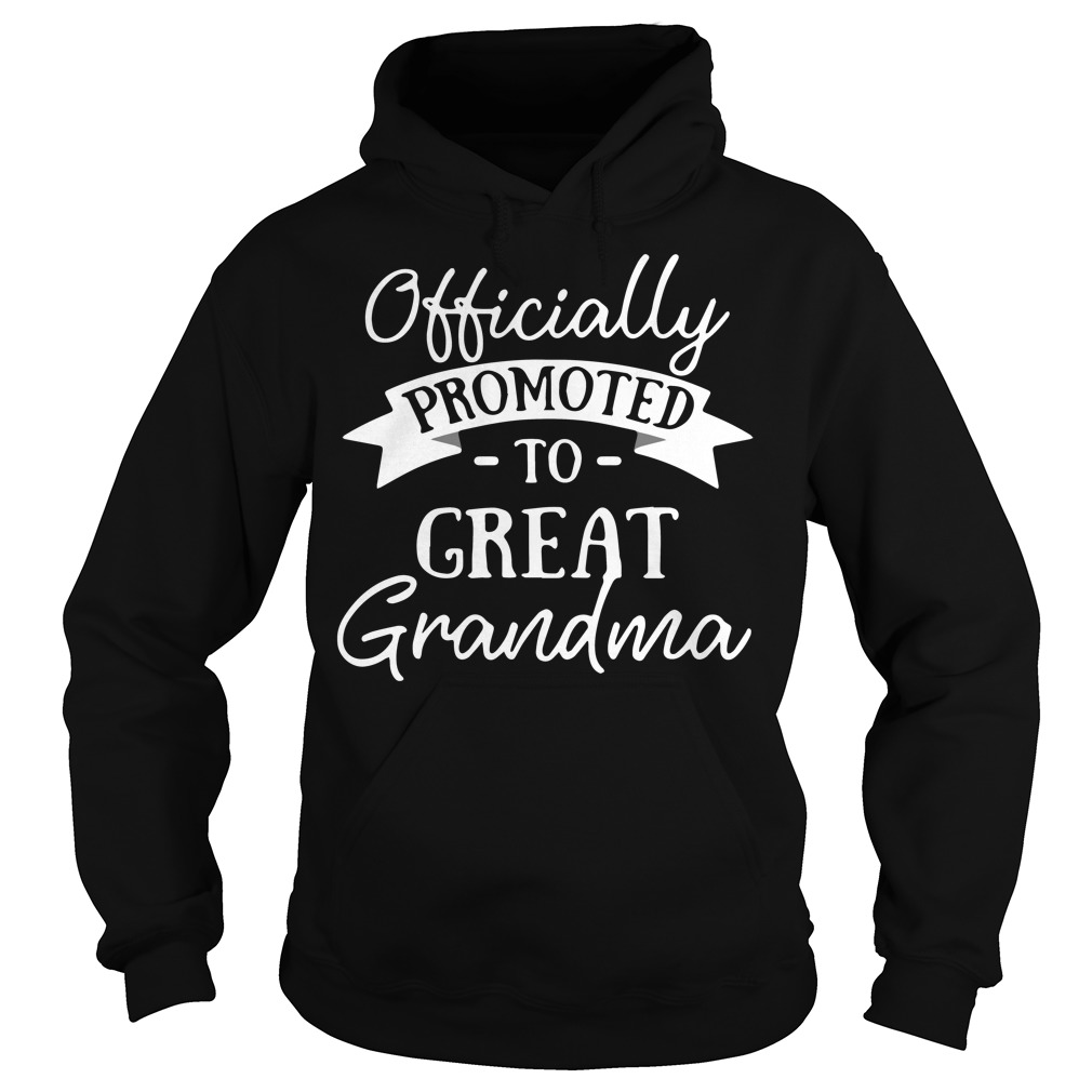 Officially promoted to great grandma Hoodie