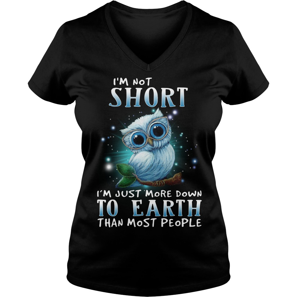 I'm not short I'm just more down to earth than most people V-neck T-shirt