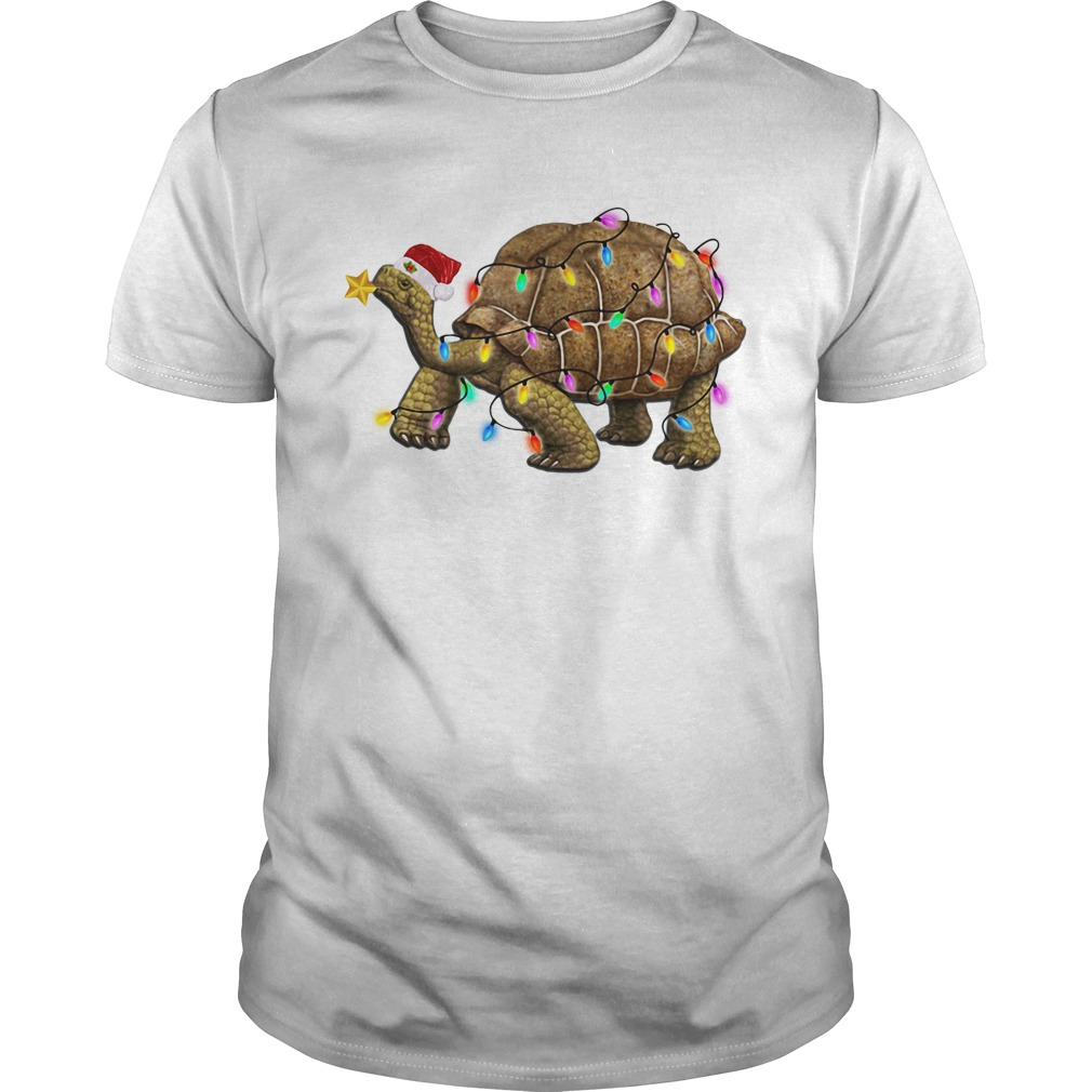 Turtles Satan light Christmas Guys shirt