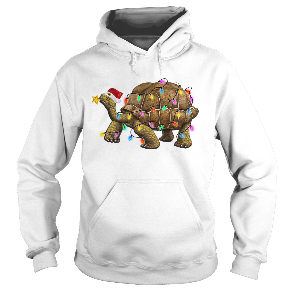 Turtles Satan light Christmas Hoodie