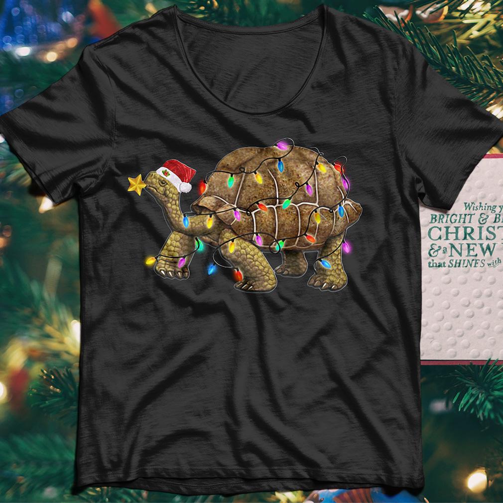 Turtles Satan light Christmas sweater