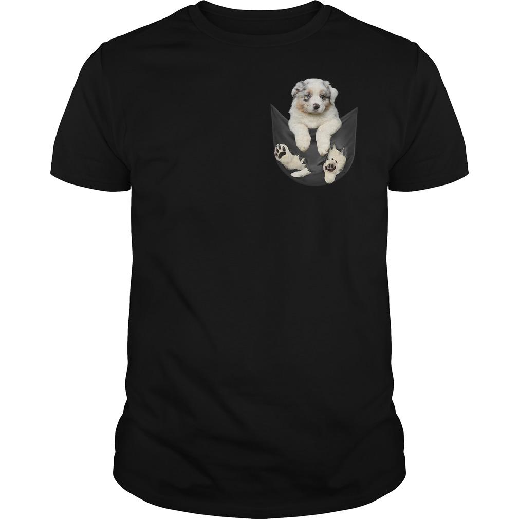 Australian Shepherd in a pocket Guys shirt