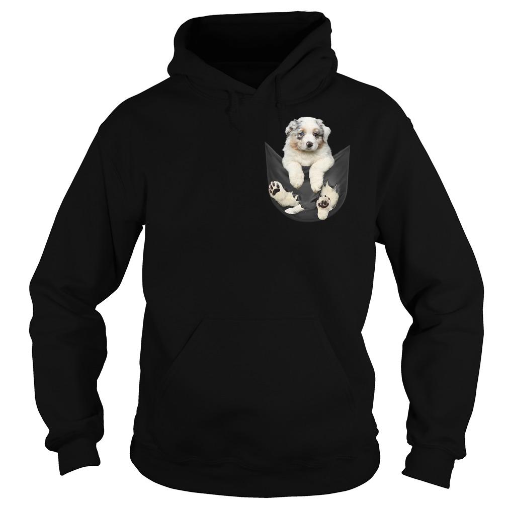 Australian Shepherd in a pocket Hoodie