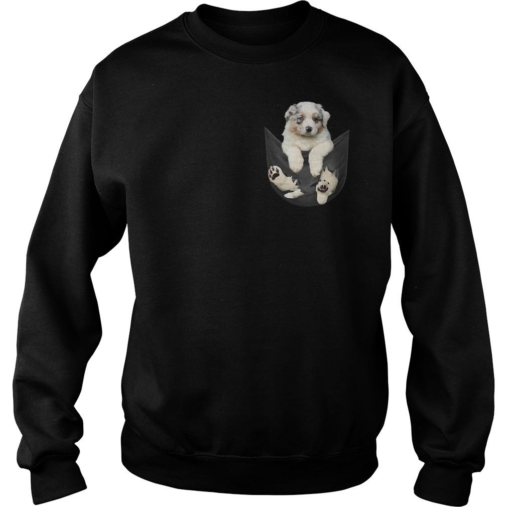 Australian Shepherd in a pocket Sweater