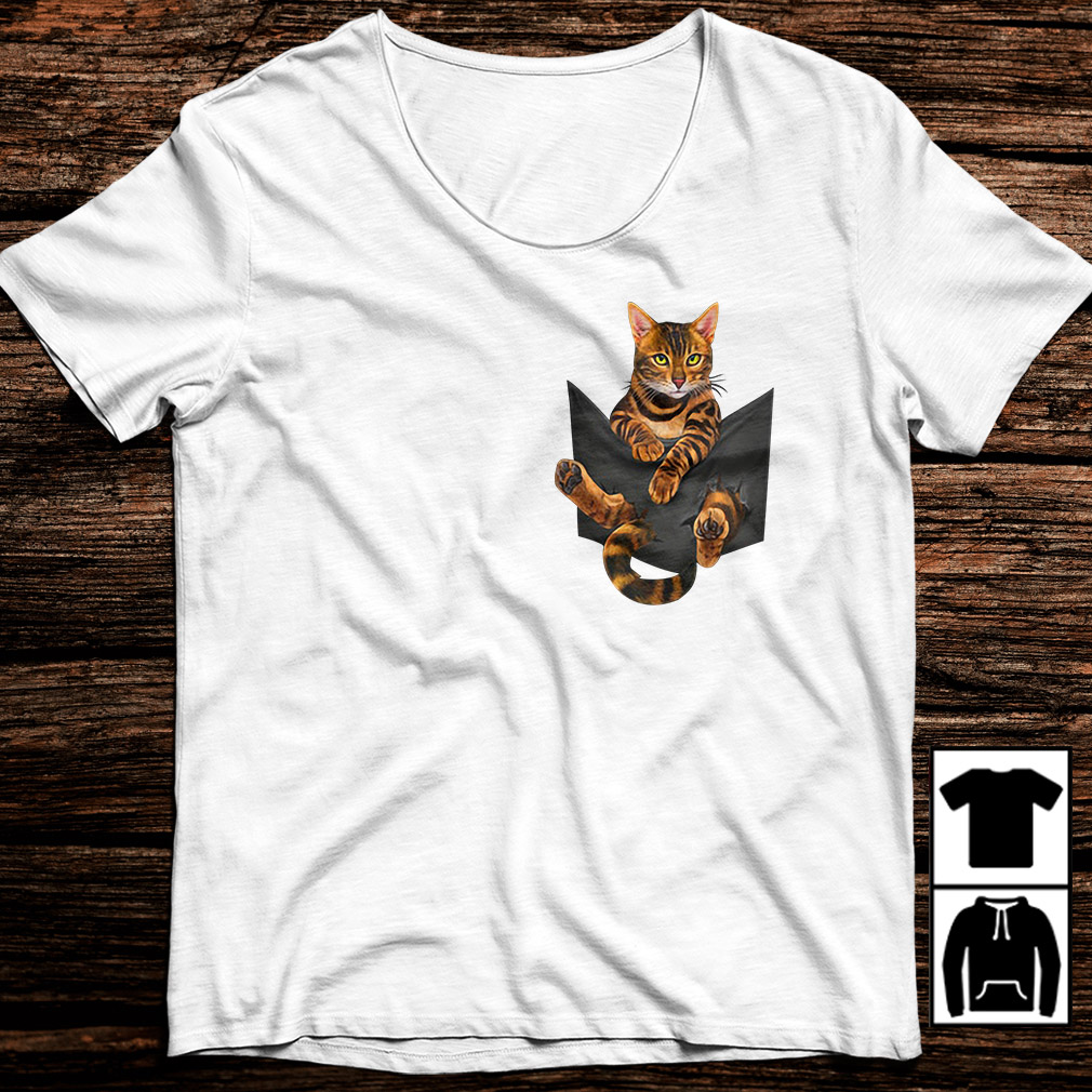 Bengal cat in a pocket shirt