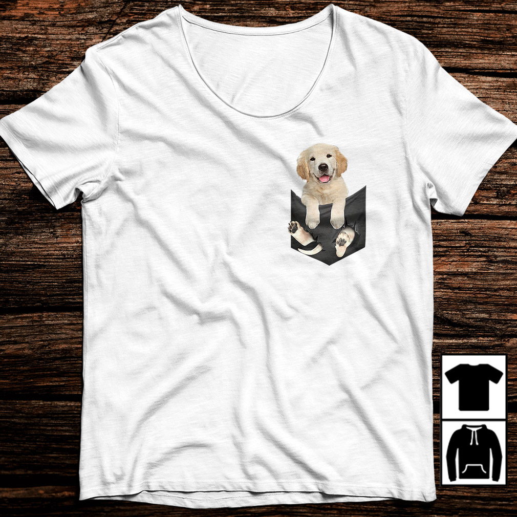 Golden Retriever in a pocket shirt