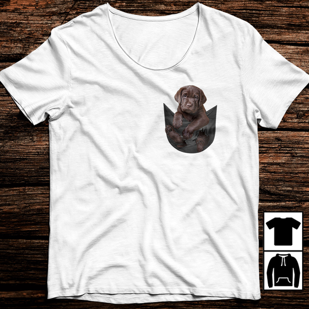 Staffordshire Bull Terrier in a pocket shirt