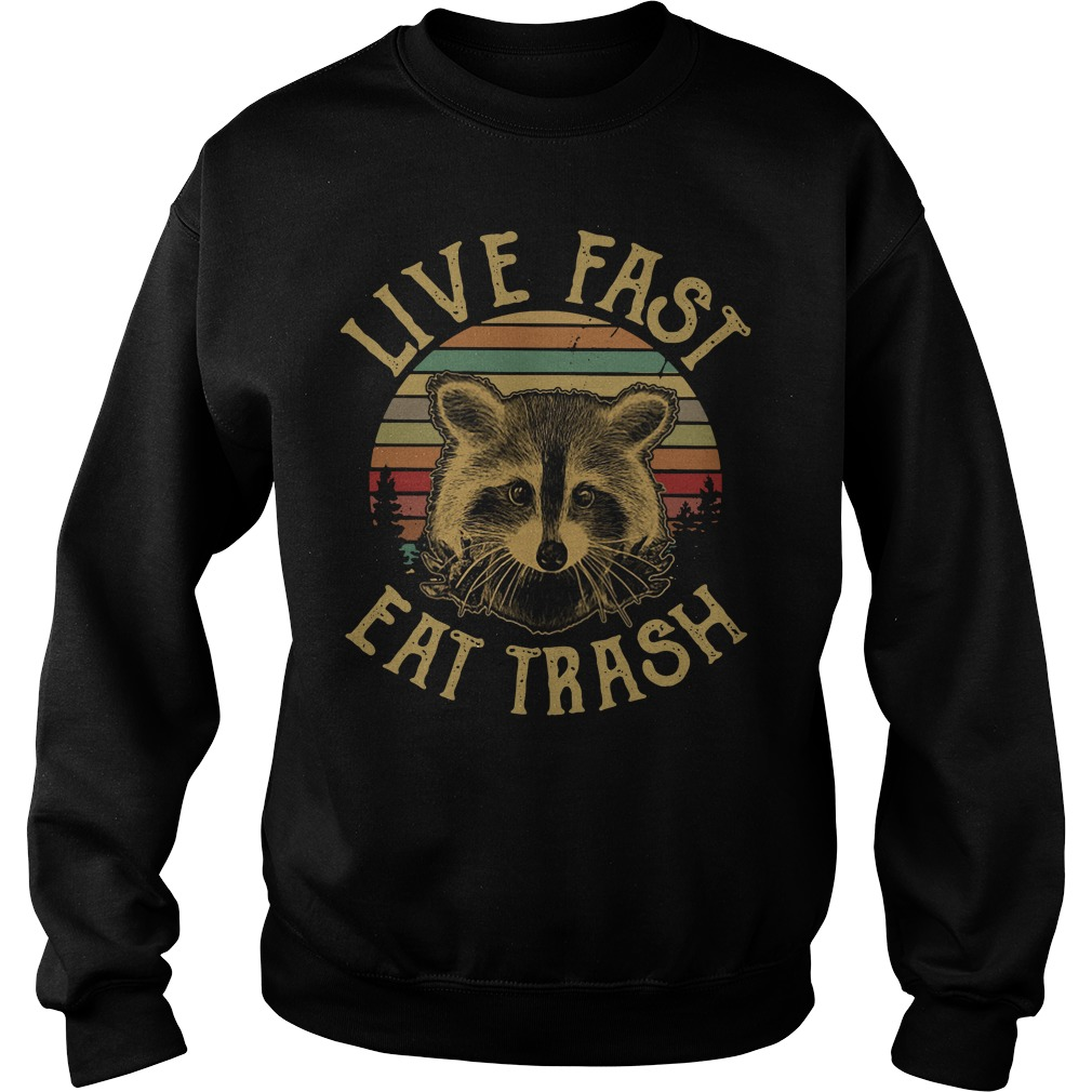 Vintage Raccoon live fast eat trash Sweater