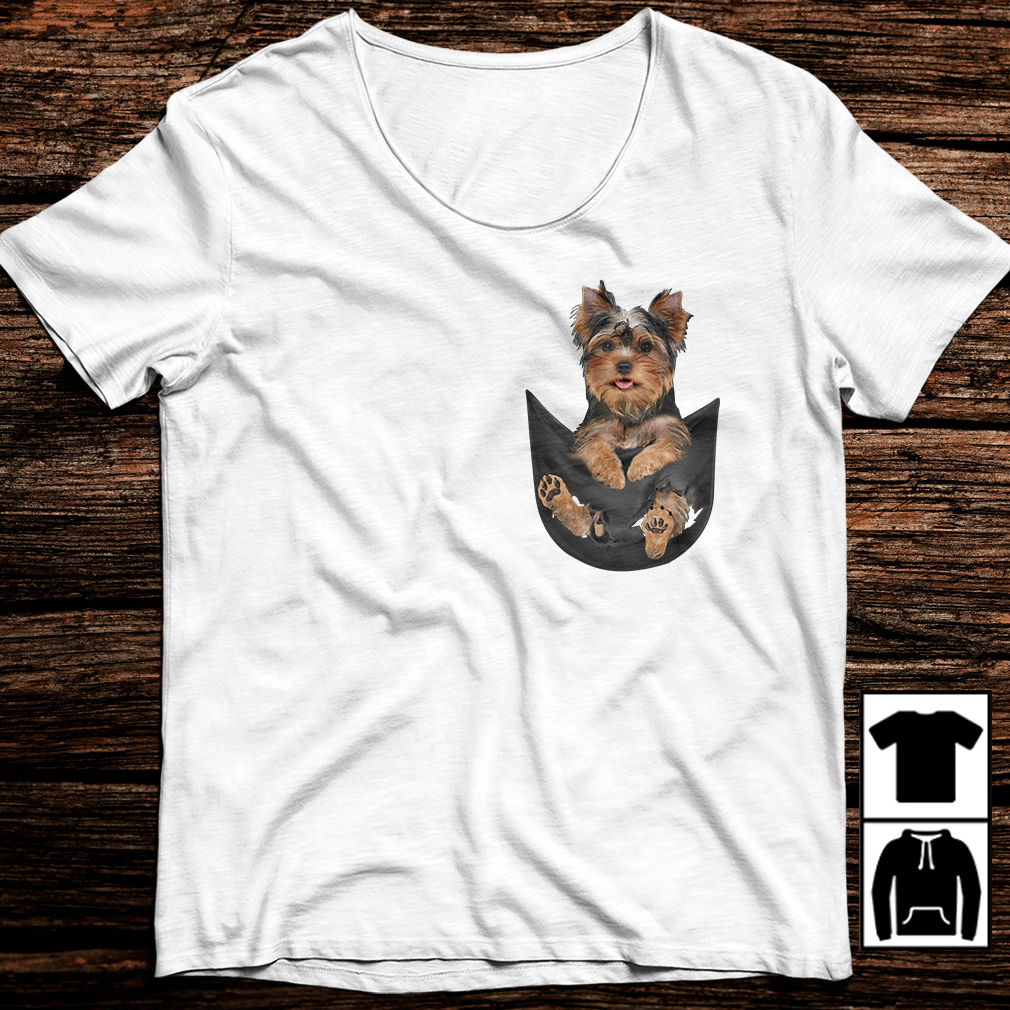 Yorkshire Terrier in pocket shirt
