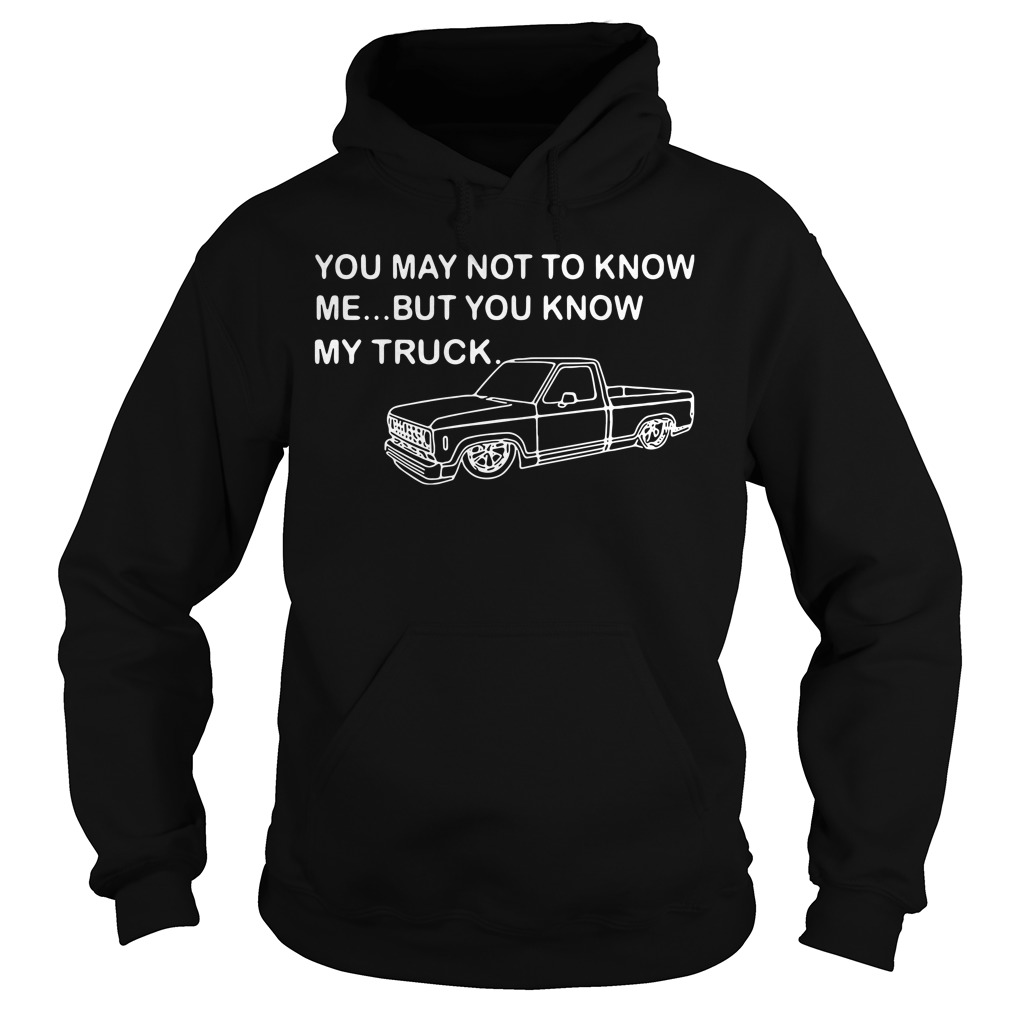 You may not know me but you know my truck Hoodie