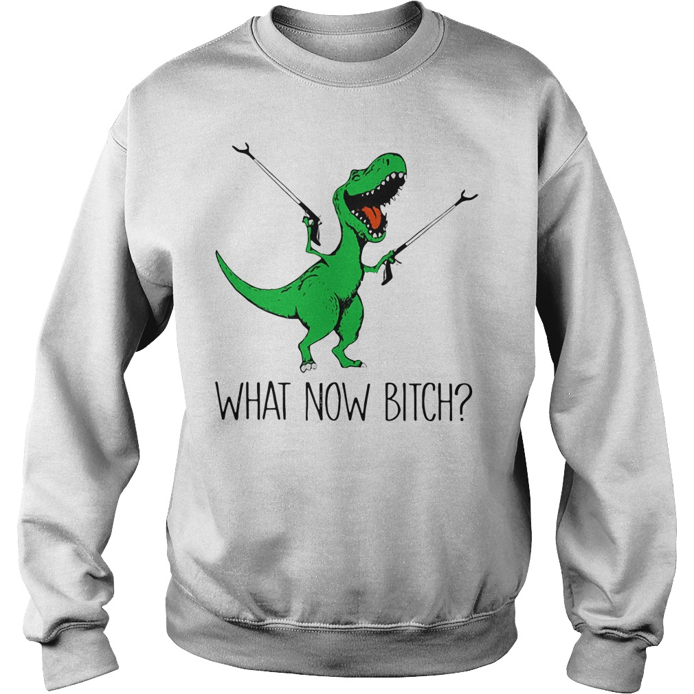 Dinosaurs Unicorn what now vitch Sweater