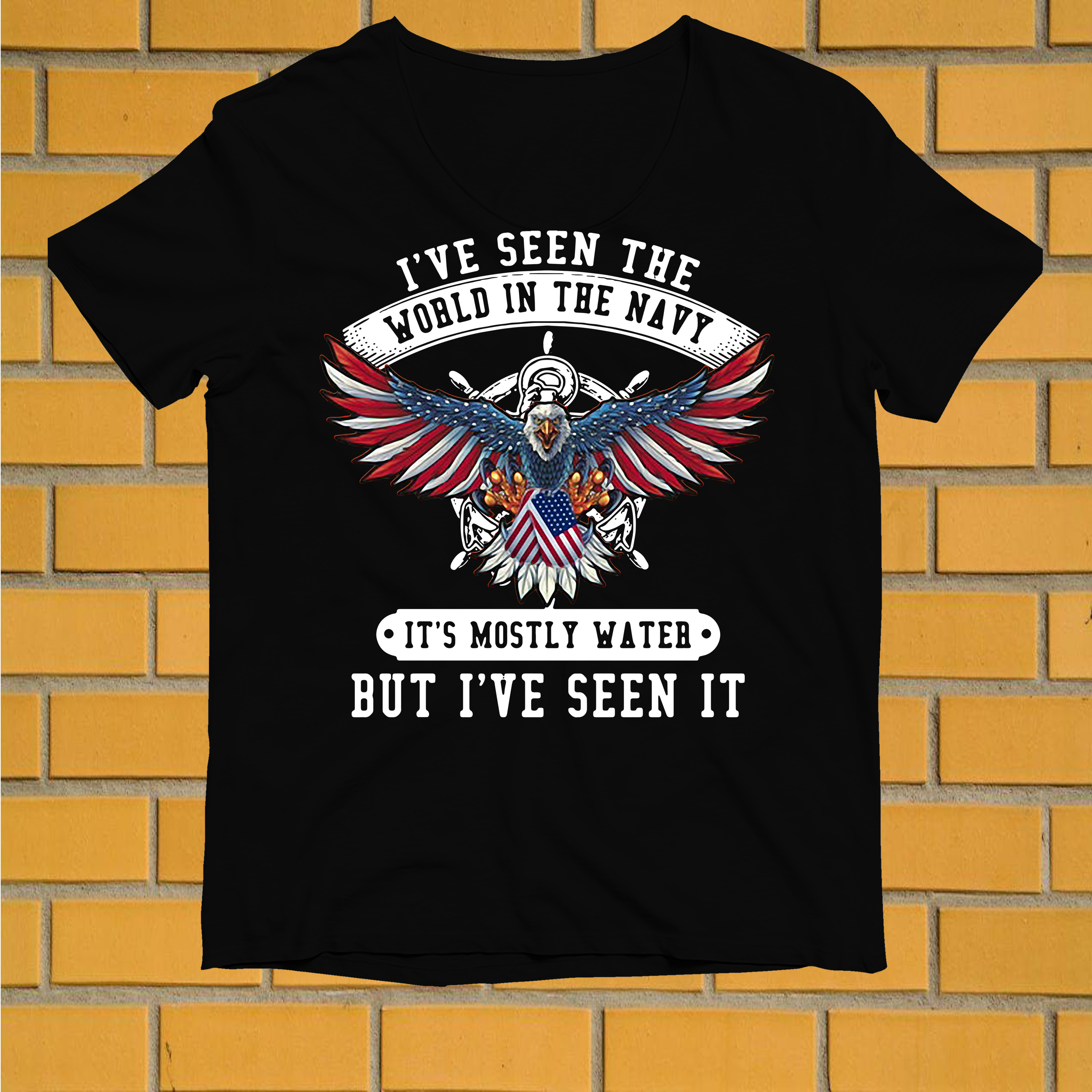 Veteran I've seen the world in the navy it's mostly water but I've seen it shirt