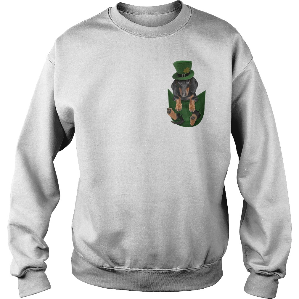 Irish Dachshund in a pocket St Patrick's day Sweater