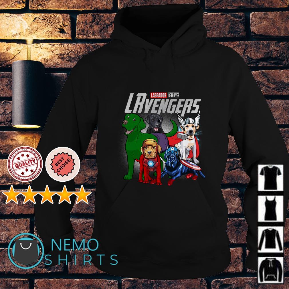 Marvel Avengers Labrador Retriever LRvengers Hoodie