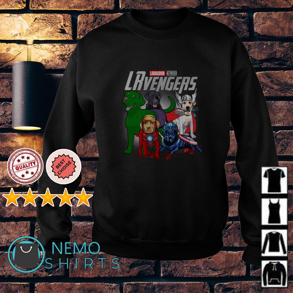 Marvel Avengers Labrador Retriever LRvengers Sweater