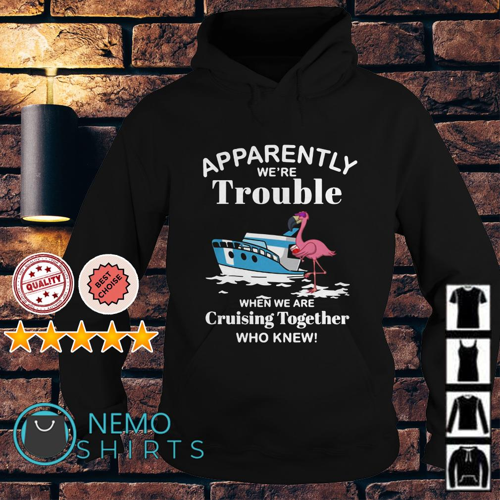 Flamingo apparently we're trouble when we are cruising together Hoodie