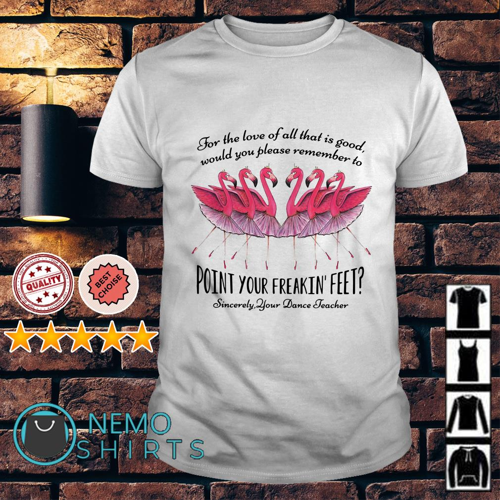 Flamingos Ballet for the love of all that is good would you please remember shirt