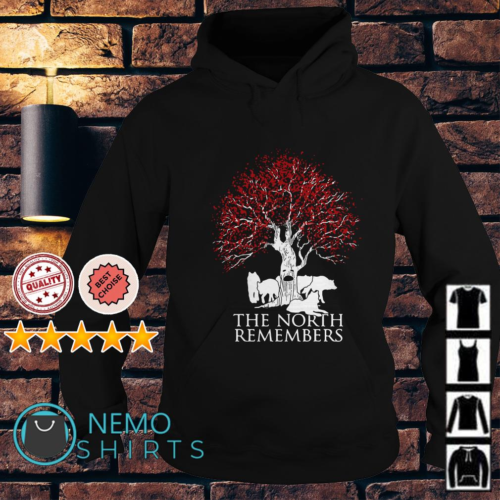 Game of Thrones Jon Snow wolf the north remembers Hoodie