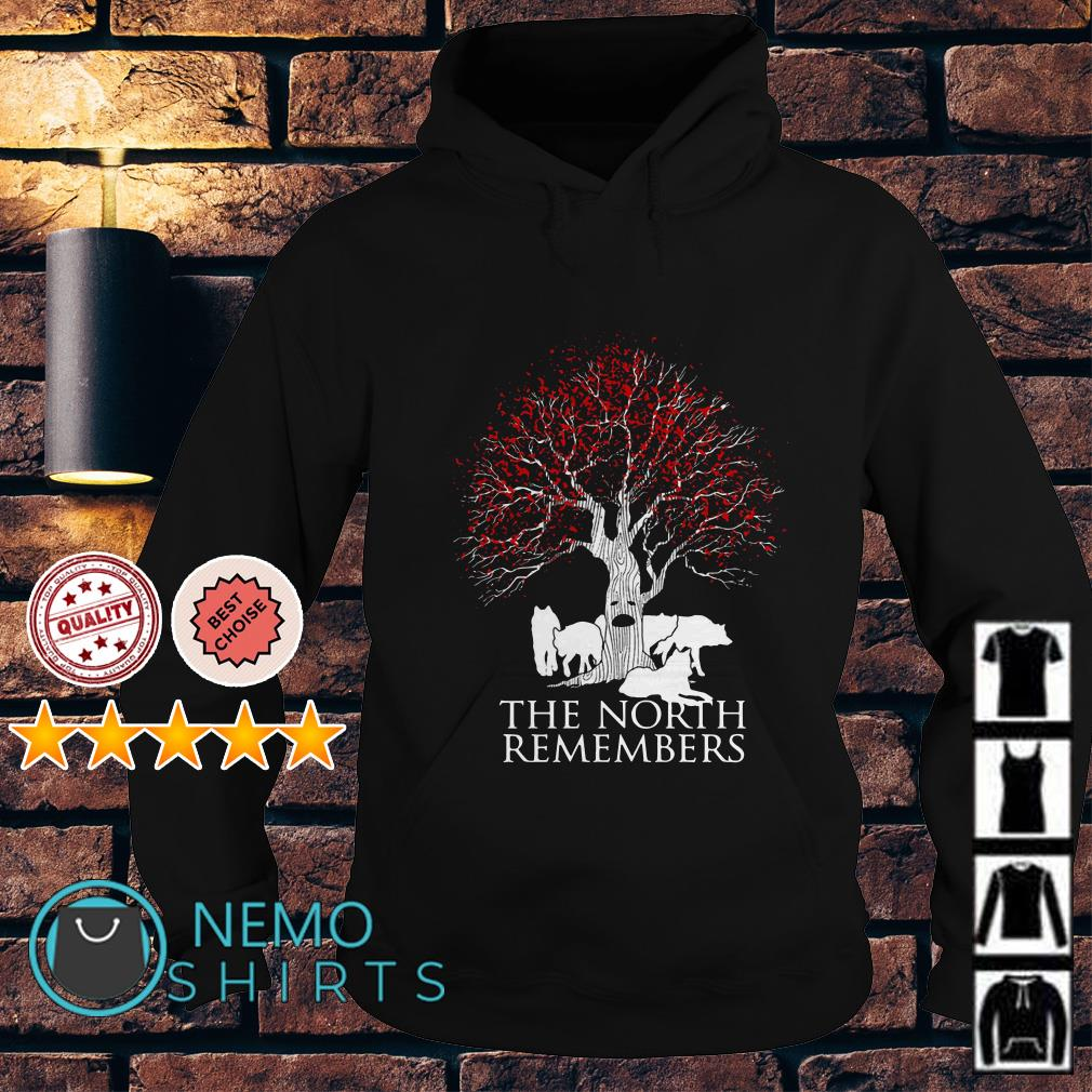 Game of Thrones the north remembers Hoodie