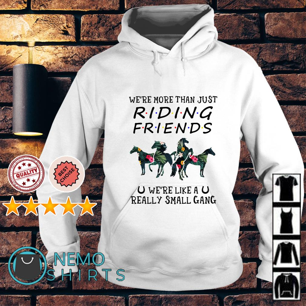Horse we're more than just riding friends we're like a really small gang Hoodie