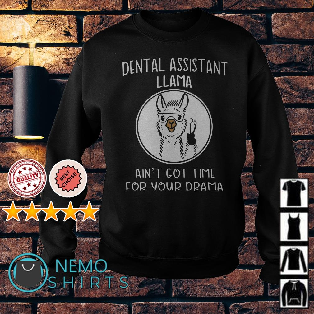 Dental assistant llama ani't got time for your drama Sweater