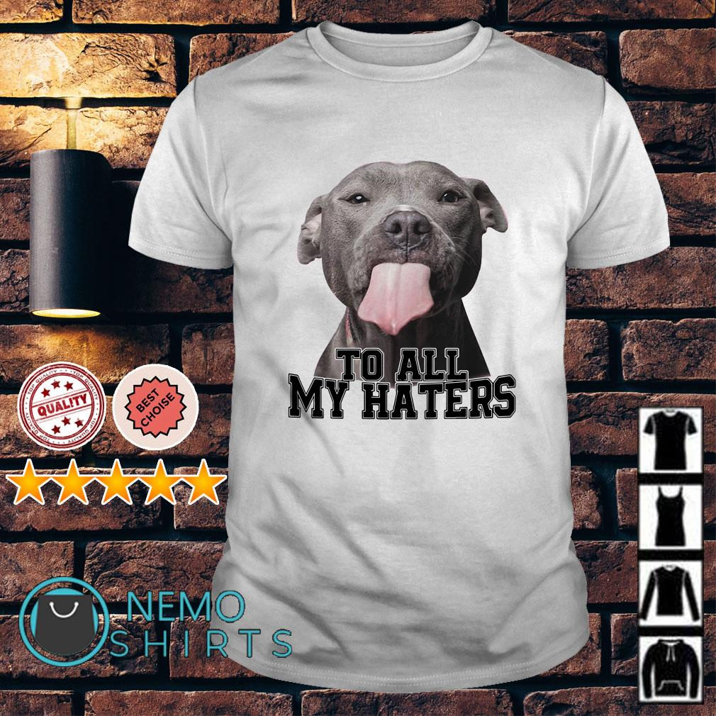 Pitbull to all my hates shirt