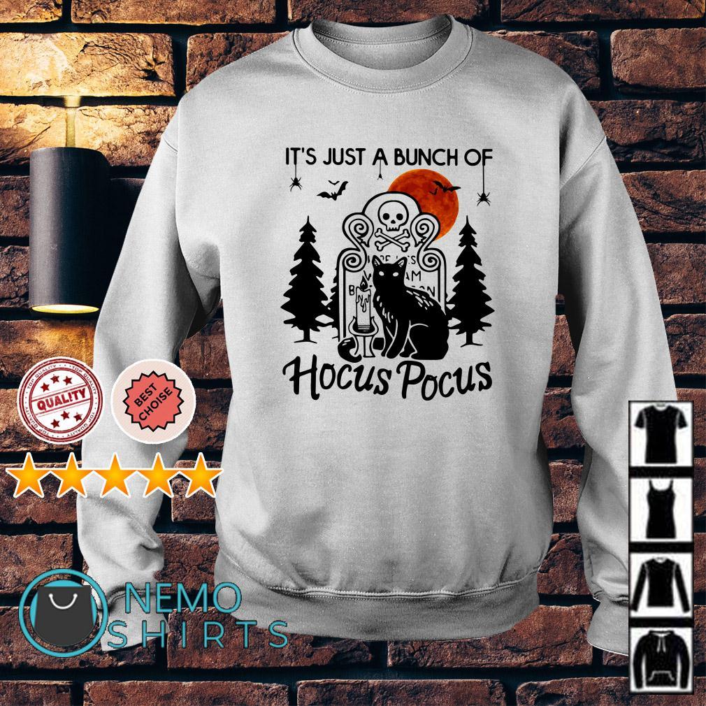 Cat it's just a bunch of Hocus Pocus Sweater