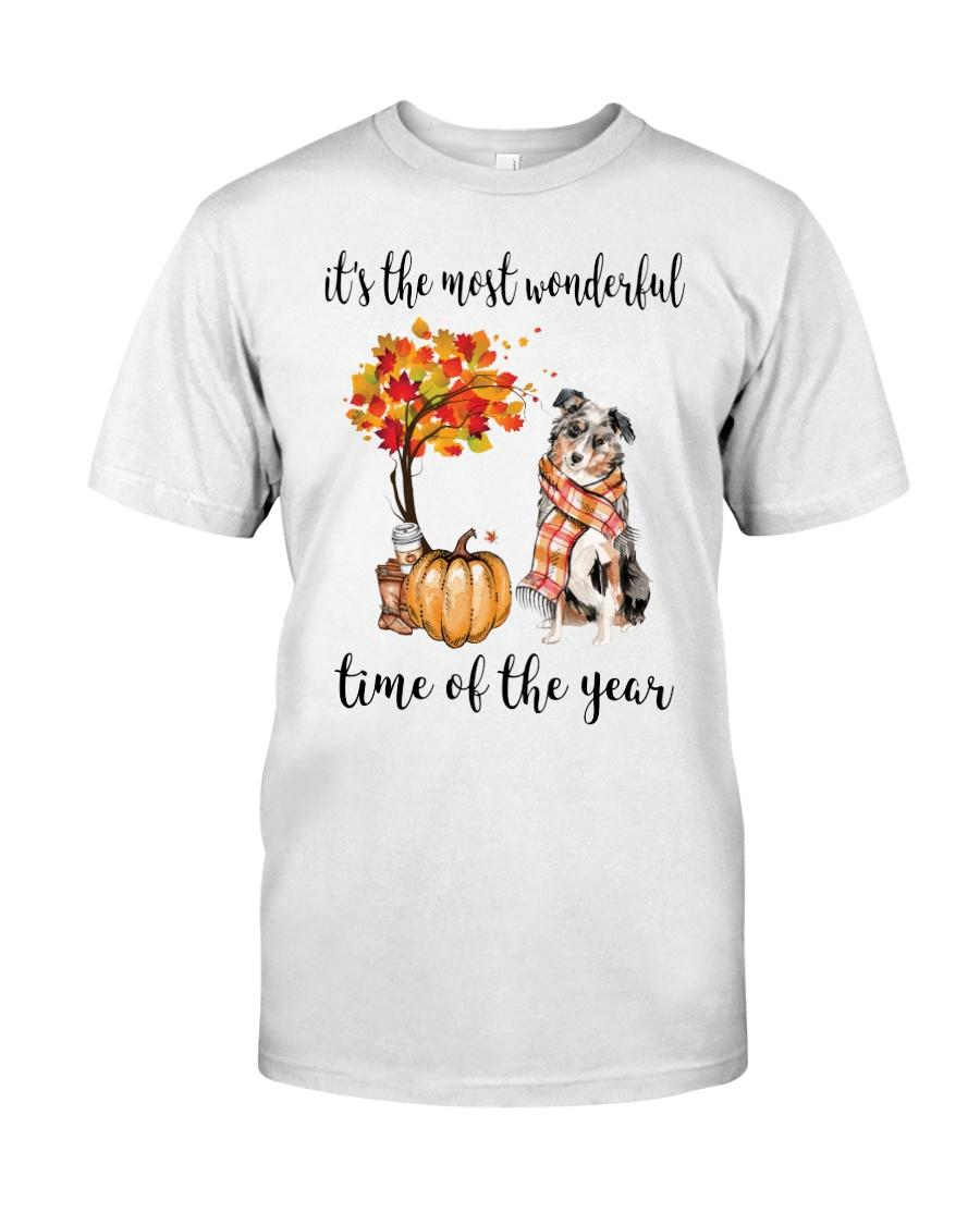 Australian Shepherd and pumpkin it's the most wonderful time of the year shirt